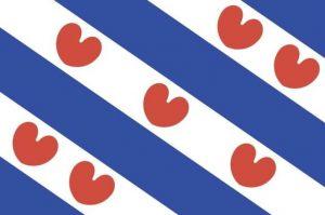 Pelletkachel Friesland